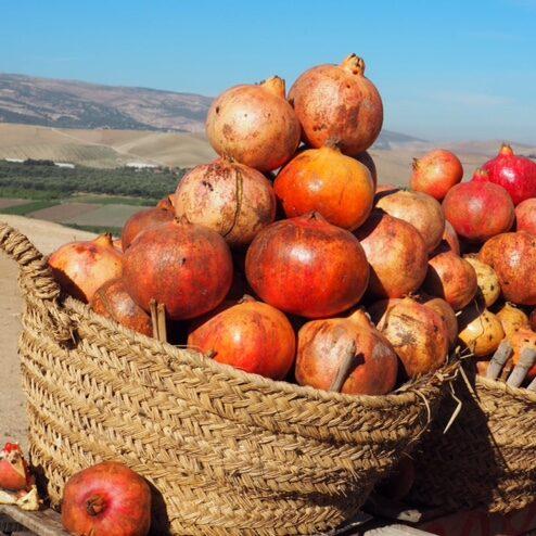 Travel food tour Morocco
