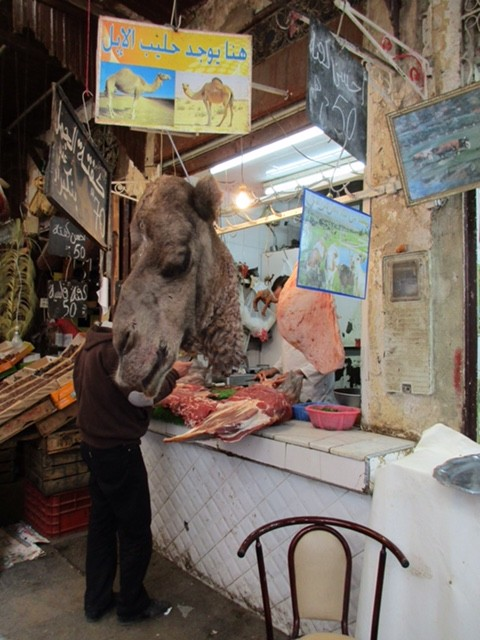Camel in the Market